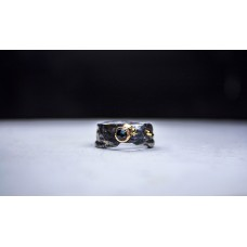 The Lost Ring of Chiron